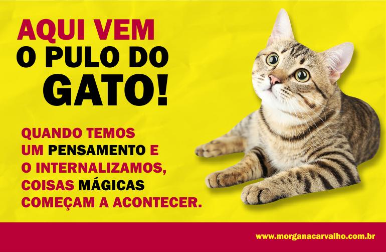 aqui vem o pulo do gato blog morgana carvalho mentora de mentalidade 1 - PENSAR DE UMA CERTA MANEIRA: MENTALIDADE